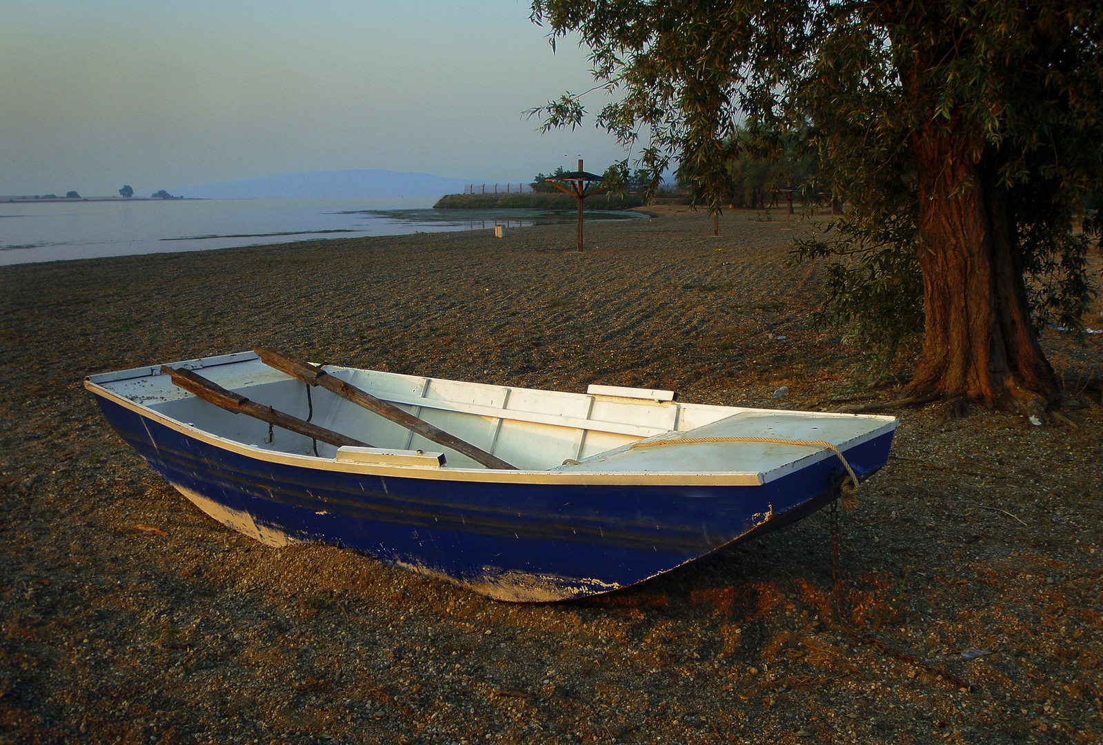Jutro na Dunavu