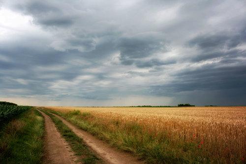 Acilim13 Letnji pejzaž