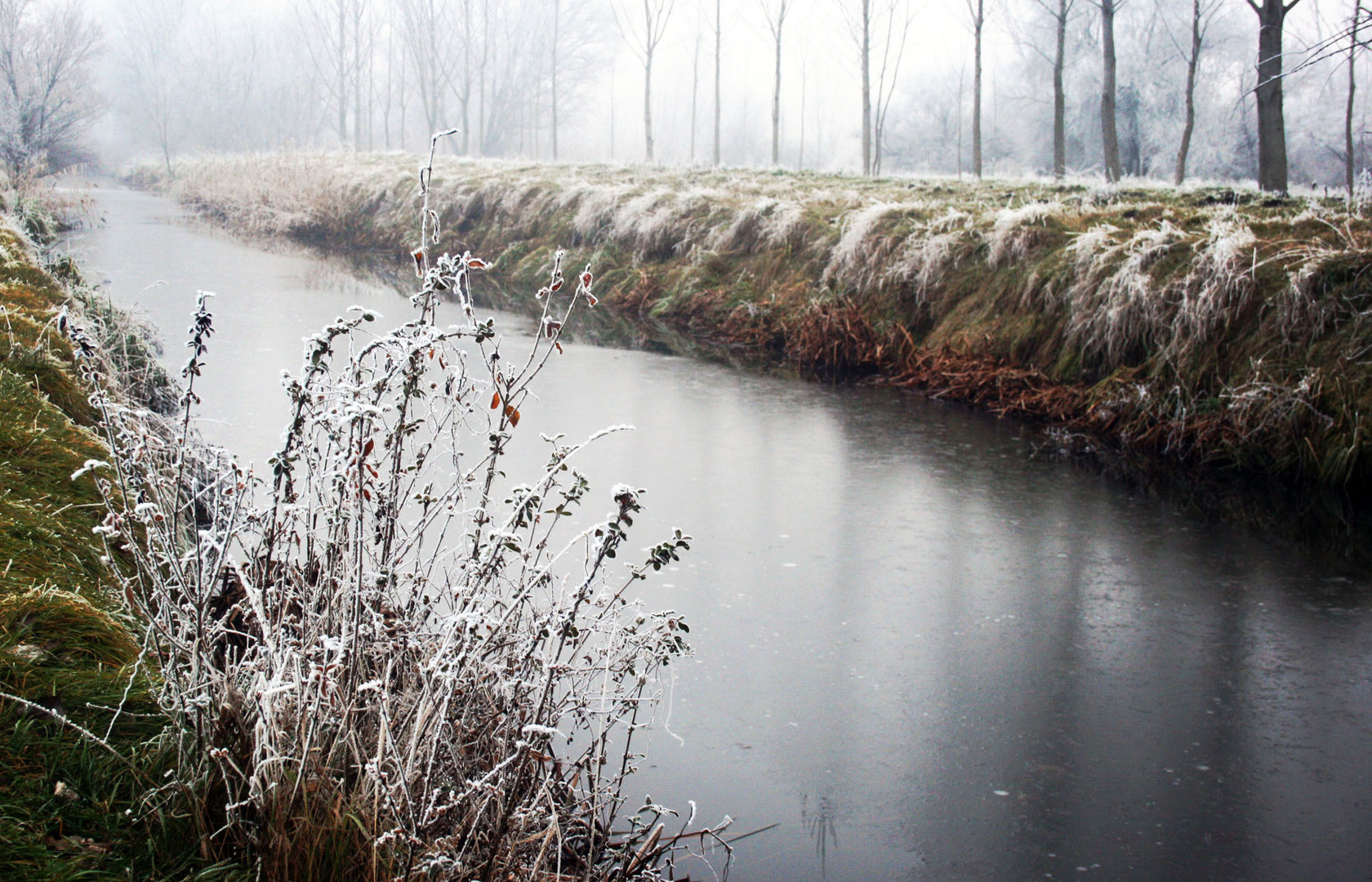 Rečica Krivaja zimi