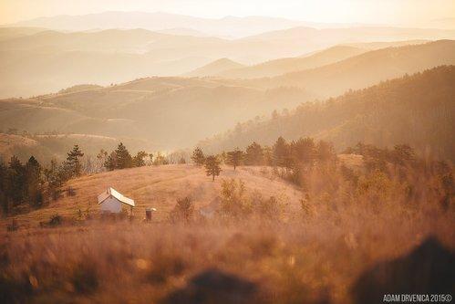 AdamDrvenica Jutro na planini