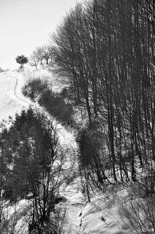 AleksaSrbin jedan zimski dan