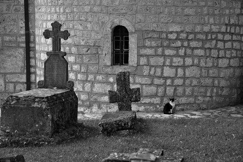 AleksaSrbin u manastirskoj porti