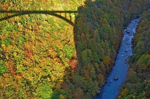 AleksaSrbin most na Tari