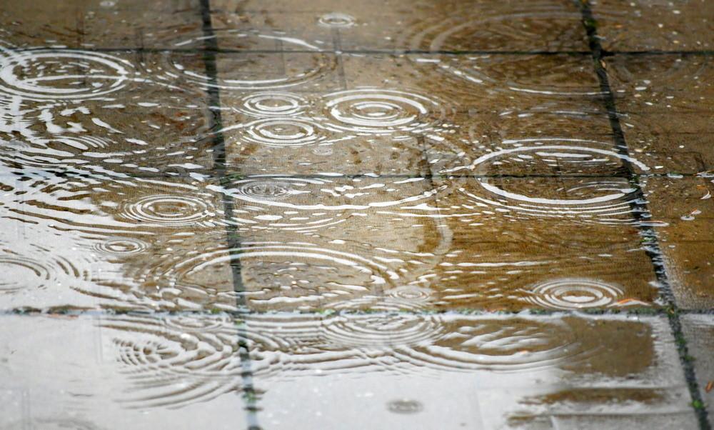 кишни дан