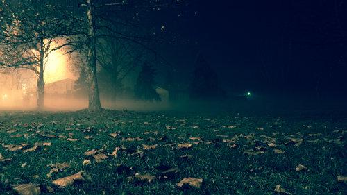 Aleksandar Magla u noći