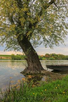 Aleksandar Kraj jezera