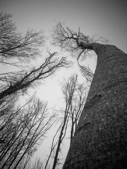 Alex_photography Good vibration
