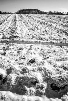 Bimbo Snežni pokrivač