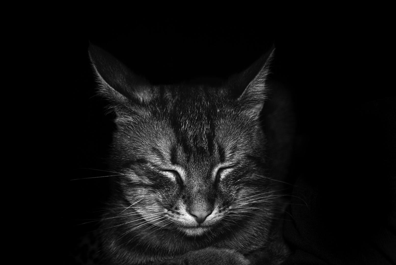 Поспанко