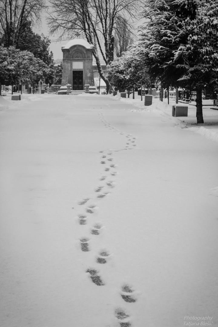 Stope u snegu...