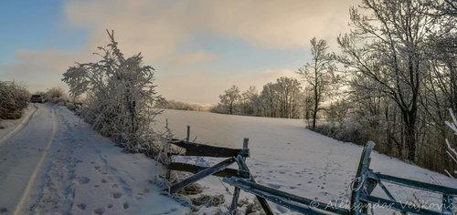 Bluealek Homoljska zima
