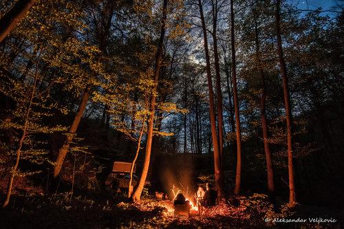Bluealek Šumsko skrovište modernih nomada
