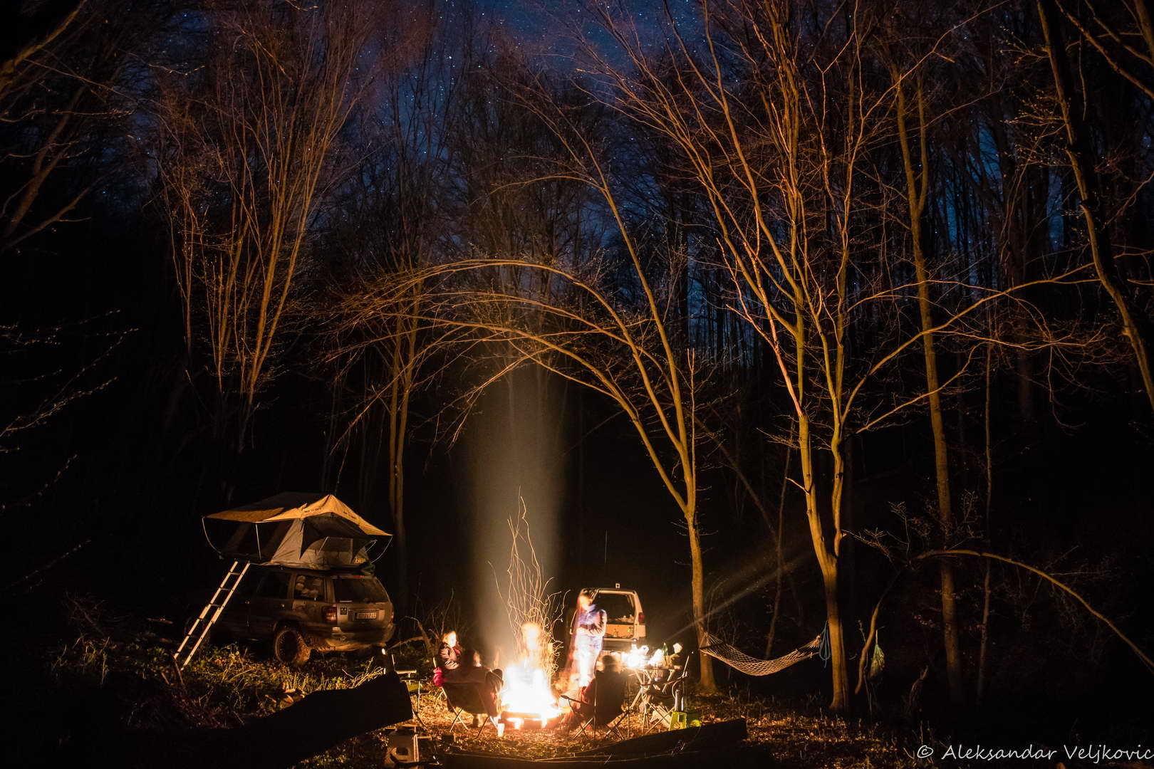 Duboko u šumi noću