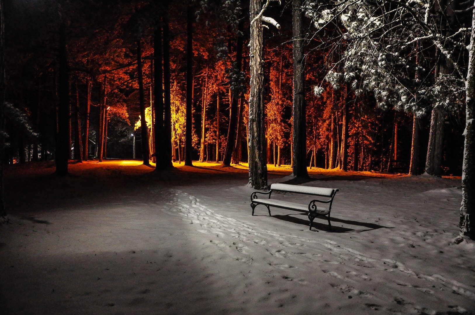 Zimska noć u parku