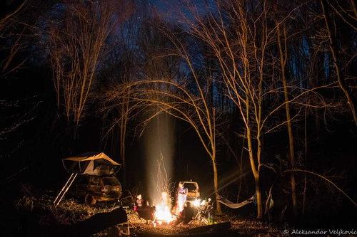 Bluealek Duboko u šumi noću