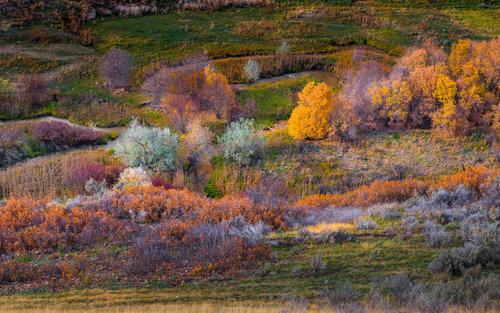 Bogisha Utah tonovi