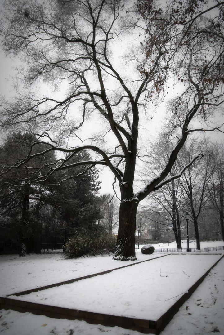 Sneg na kvadrat