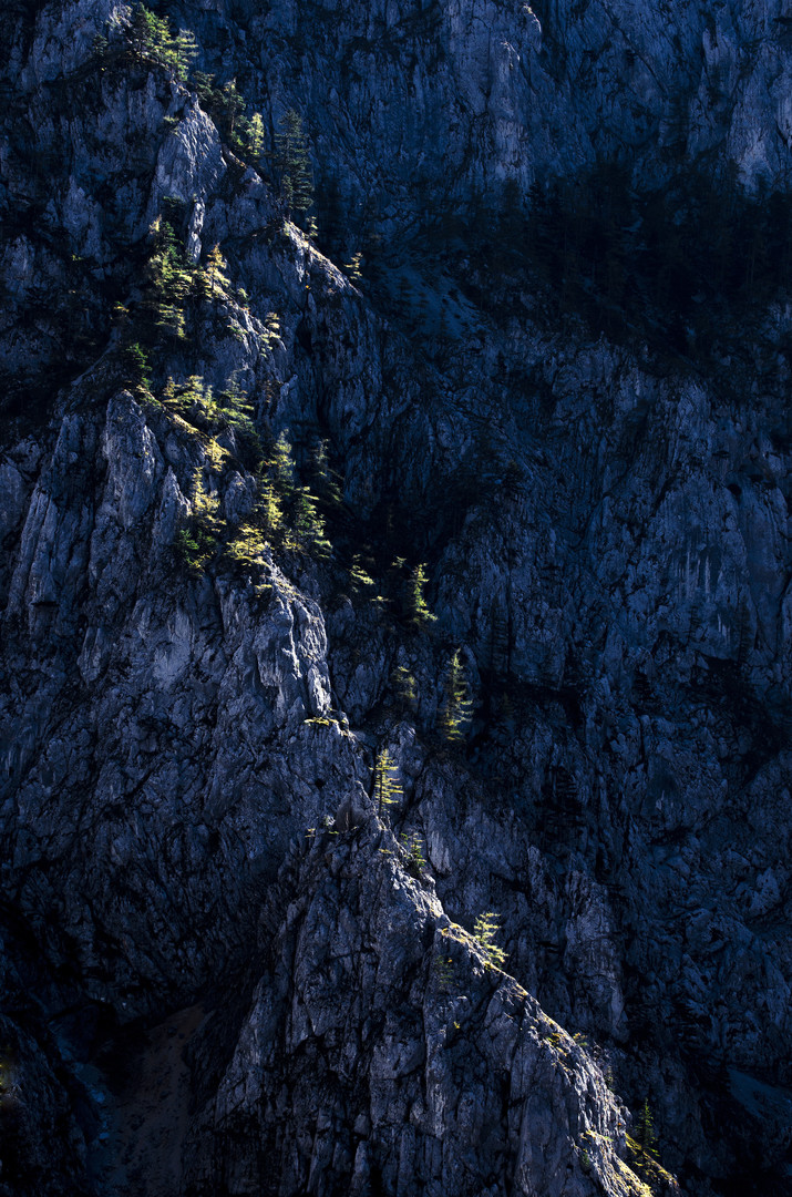 Planinski strazari