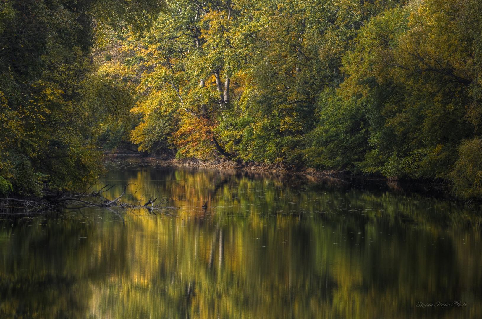 U jesenjim bojama