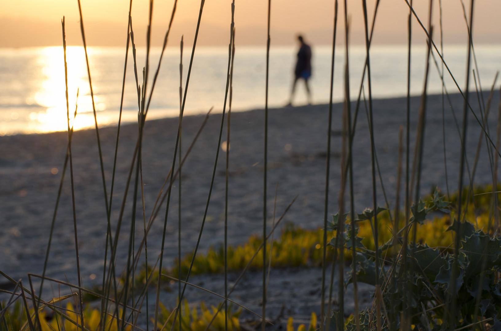 Usamljenom obalom