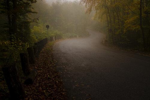 BokiS Jesen