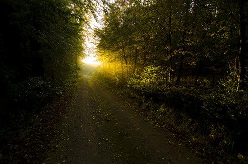 BokiS Nedostizna svetlost