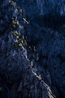BokiS Planinski strazari