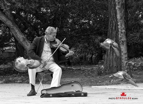 Boyche Violinista