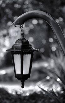 Brkica956 Lampion