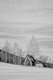 Brkica956 Zimske carolije.