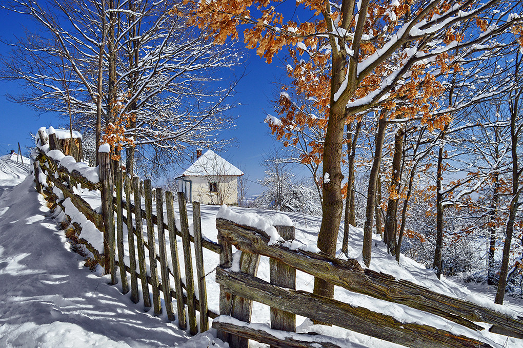 Jedan zimski dan