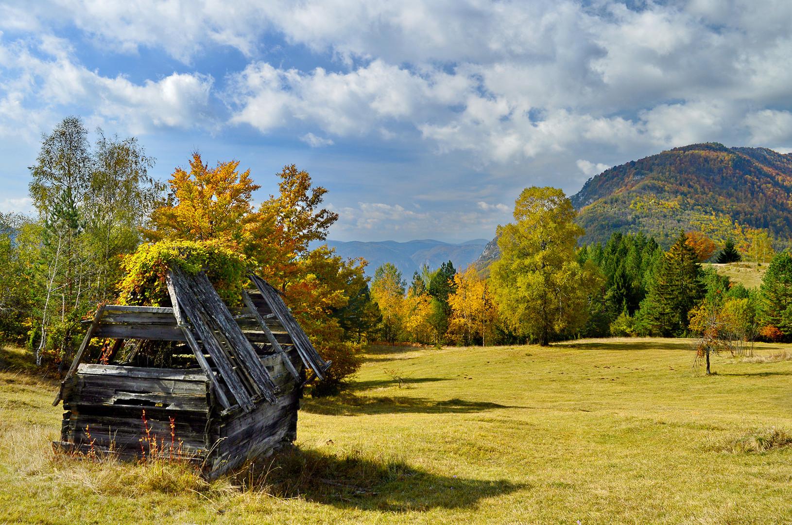Jesen na Tari-Zaovine.
