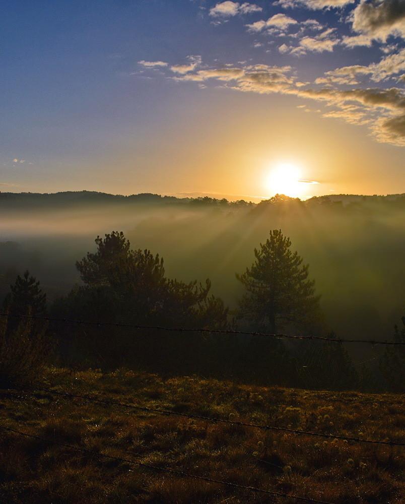 Jutro ,sa prvim zracima sunca.