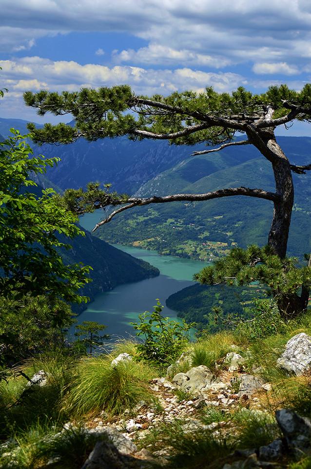 Tara-jezero Perucac