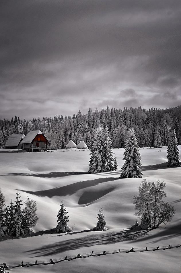 Zimske senke