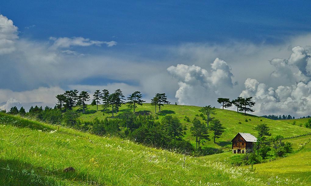 Zlatiborski pejzazi