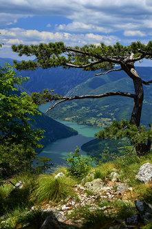 Brkica956 Tara-jezero Perucac