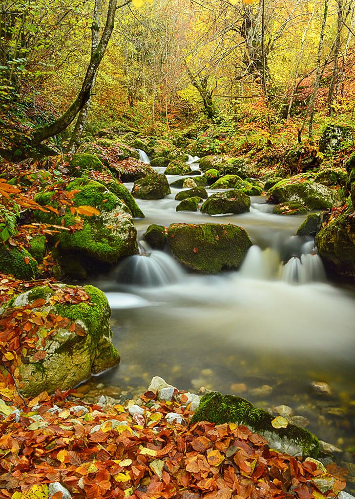Racanska reka.