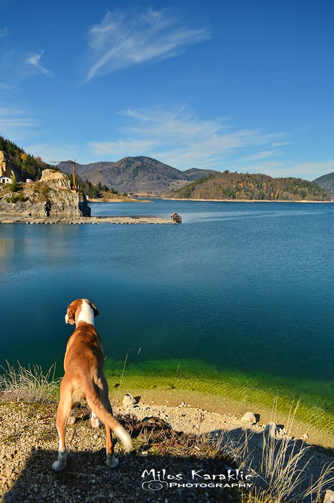 Tara jezero Zaovine.