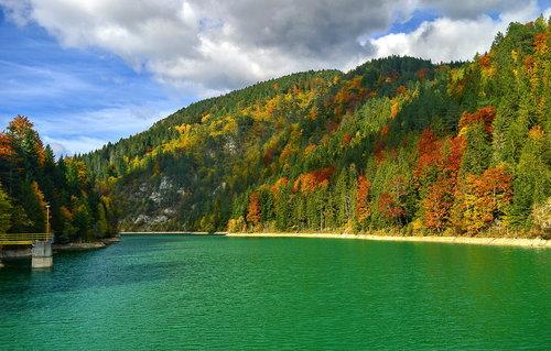 Brkica956 Tara, jezero pijace vode