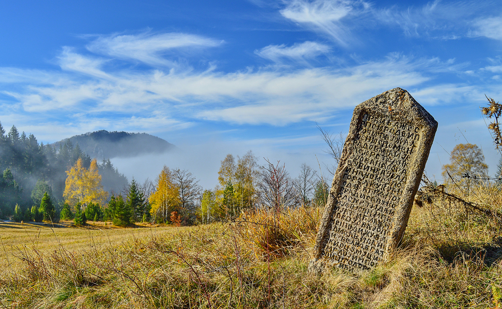 Spomenik krajputas Tara