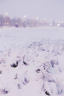 DCerskov Zimsko veče