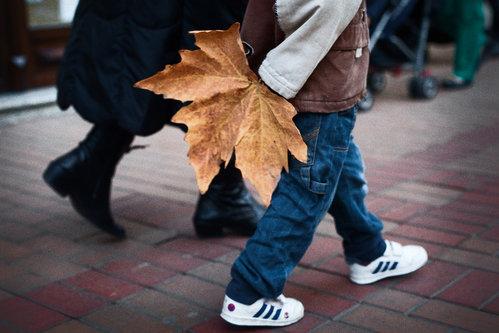 Danna jesen u šetnji