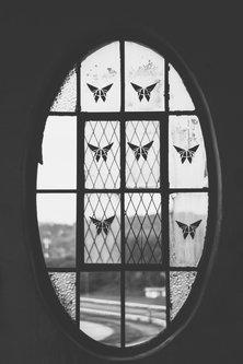 Danuberiverchild prozor