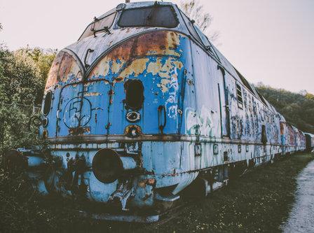 Danuberiverchild плави воз