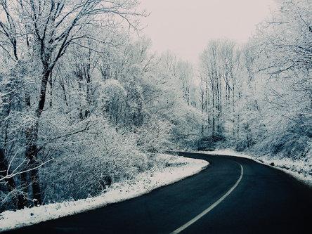 Danuberiverchild sneg