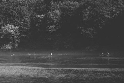 Danuberiverchild mirno jutro
