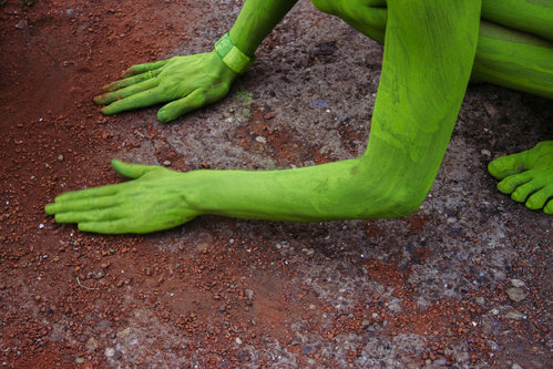 Danuberiverchild zeleno