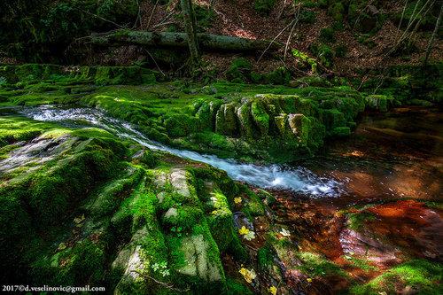 Darkves IMG 3905 3907-r - Studenička reka