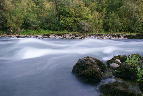 Djiki reka Lim